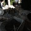 backyard_0109