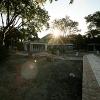 backyard_011