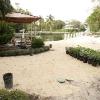backyard_0123