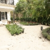 backyard_0125