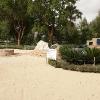 backyard_0126