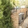 backyard_0129