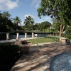 backyard_0132