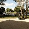 backyard_0137
