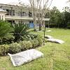 backyard_0142