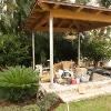 backyard_0155