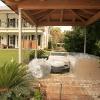 backyard_0179