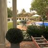 backyard_0195