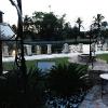 backyard_0201
