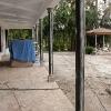 backyard_0252