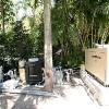 backyard_026