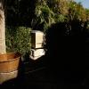 backyard_062