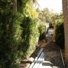 backyard_064