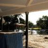 backyard_095
